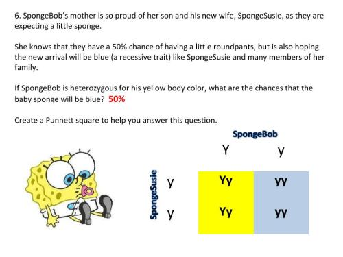 Practice Punnett Squares with SpongeBob & the Gang