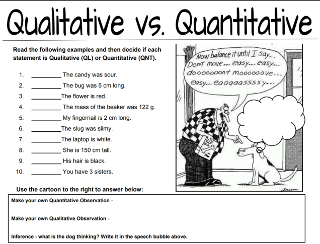 Qualitative Vs Quantitative Observations Worksheet Middle School